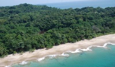 Un particolare delle Pearl Islands